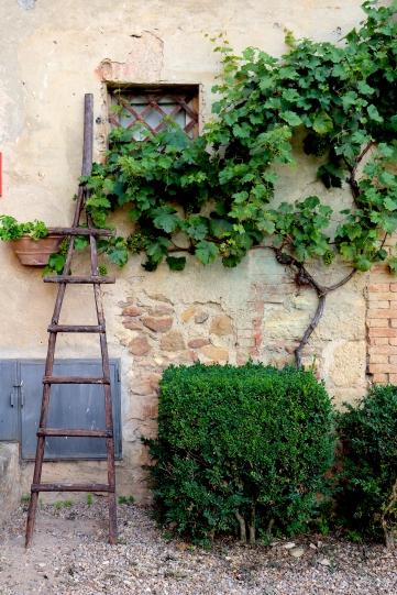 IMG_0822tessitura-toscana-telerie